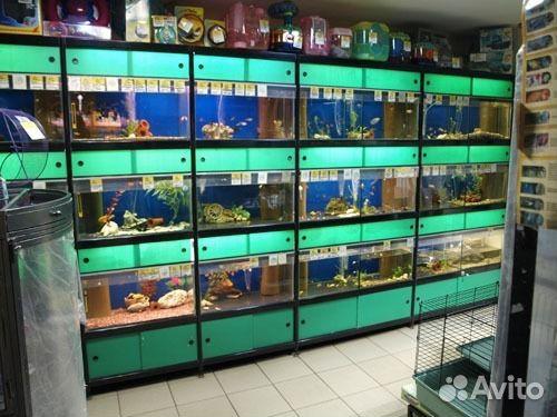 рыболовный магазин спб большой выбор