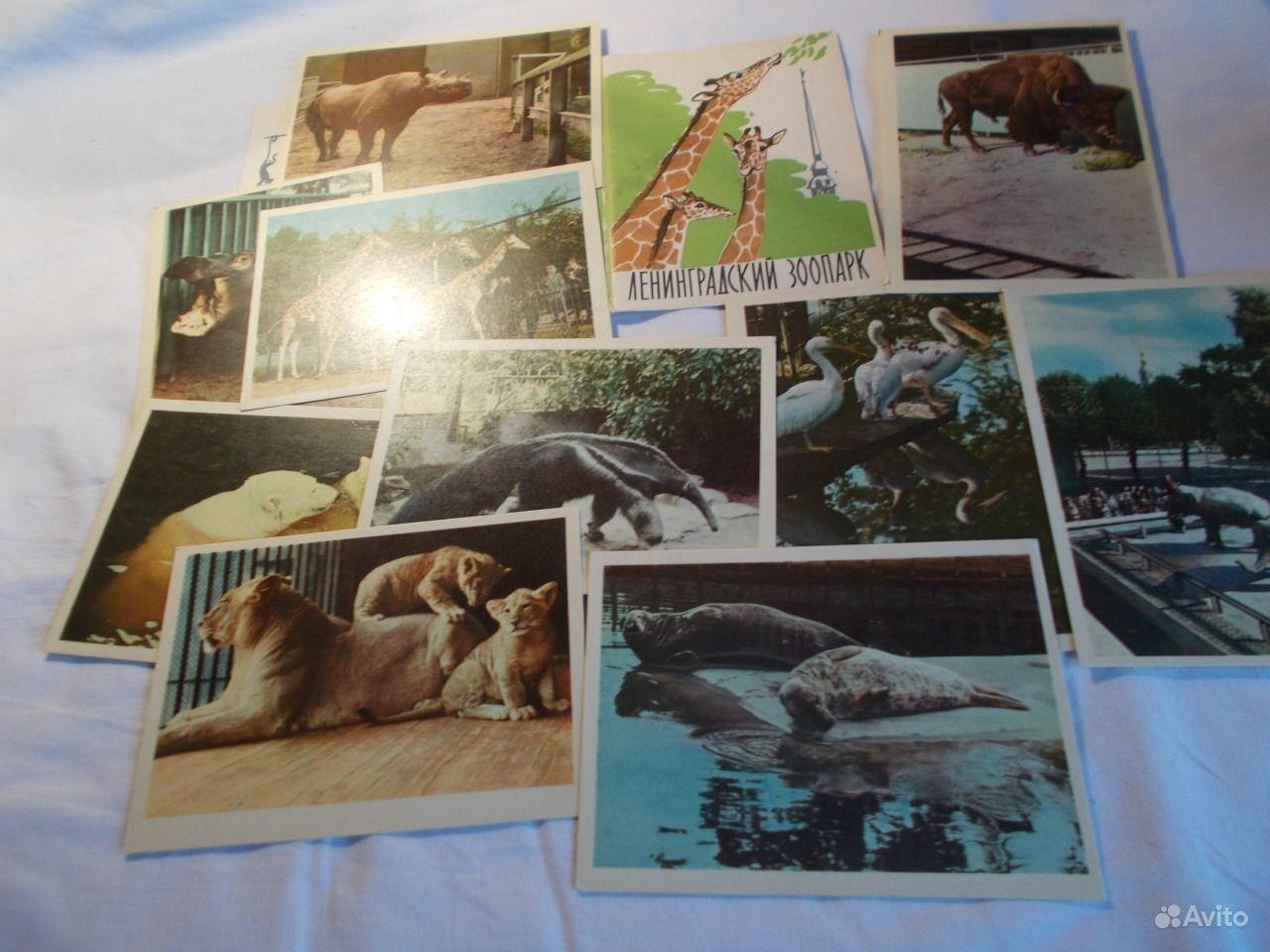 Набор открыток ленинградский зоопарк