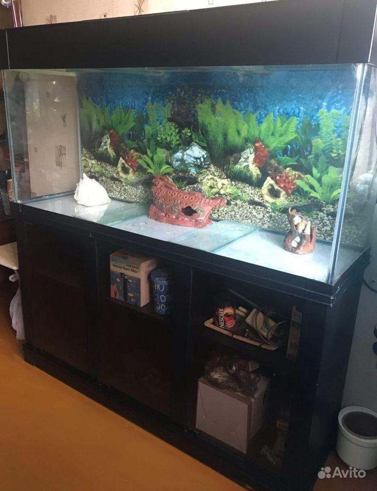Большой аквариум купить на Зозу.ру - фотография № 1