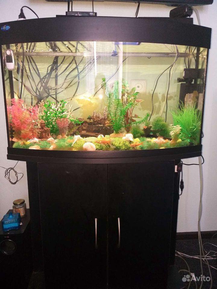 Украшение для аквариума купить на Зозу.ру - фотография № 1