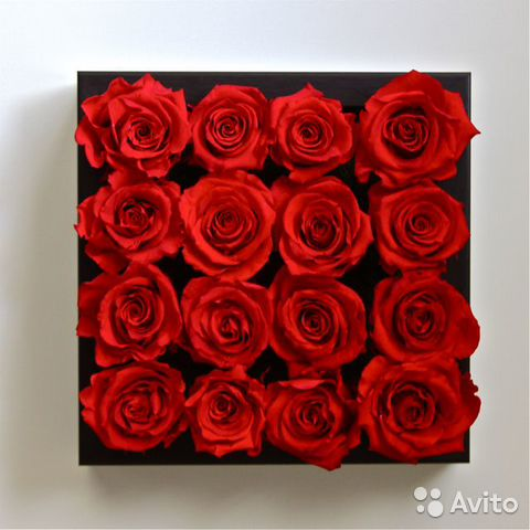 Где купить розы оптом в новосибирске уникальный подарок на юбилей