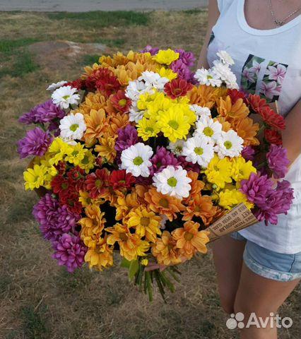 Букеты из хризантем микс оптом спб, продажа цветы оптом и в розницу москва