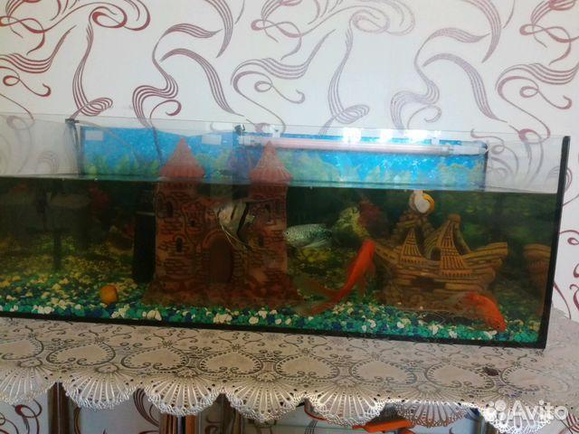 Аквариум с рыбками весь комплект