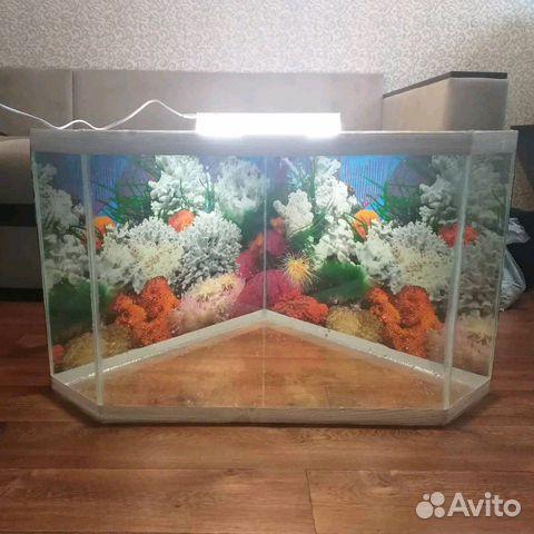 Aquarium 89103112387 buy 1