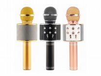 Микрофоны беспроводные с караоке