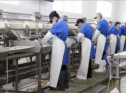работа на заводе спб для девушек