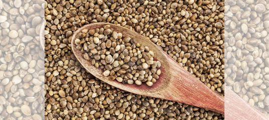 Семена конопляные объявление с символикой марихуаны