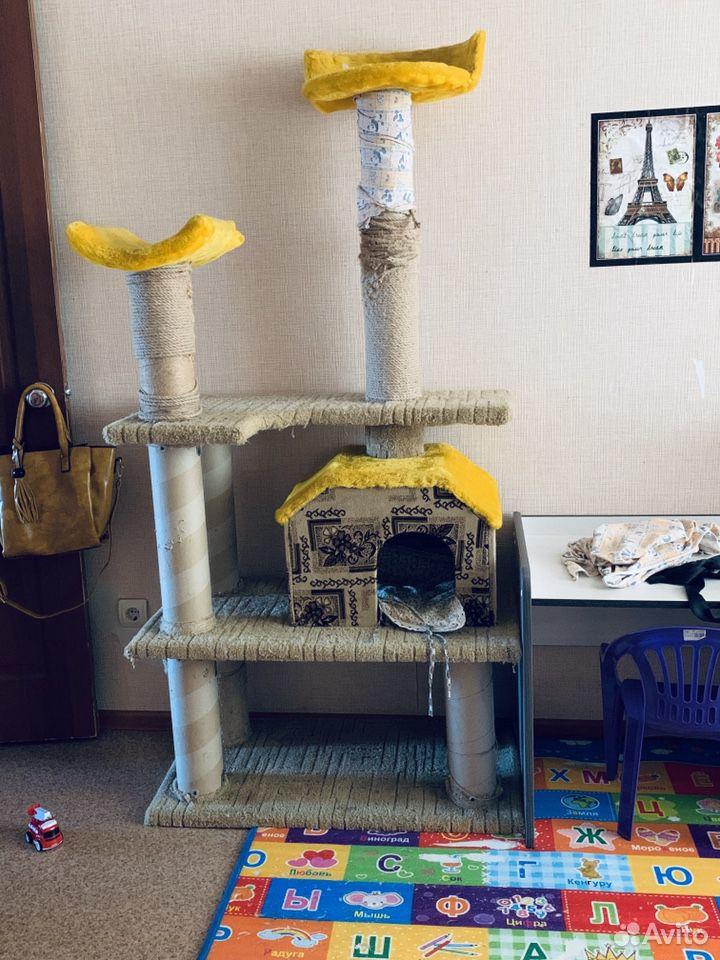 Кошачий дом  89613485513 купить 2