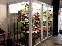 Холодильная витрина для цветов 8,2м3/ Гарантия